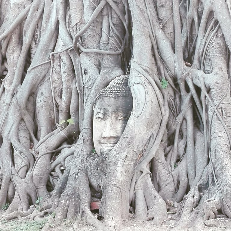 Ayutthaya bouddha temple