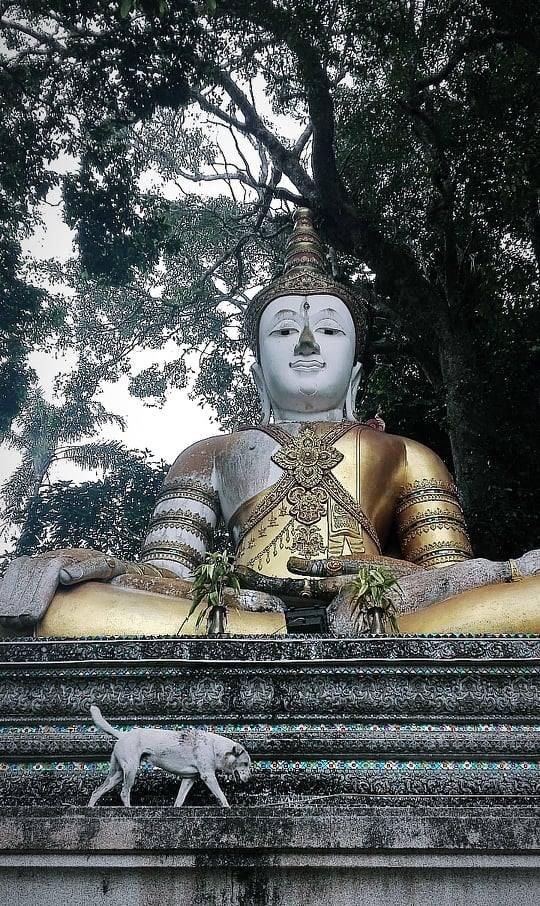 Doi Sothep, Thaïlande