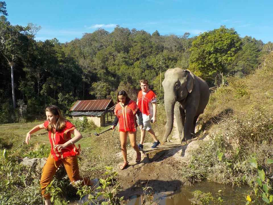 balade éléphants Thaïlande