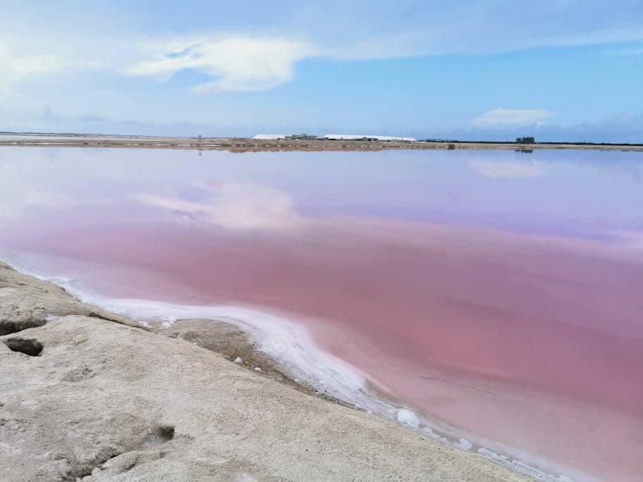 lac rose mexique