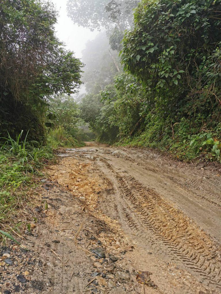 route mauvais état minca
