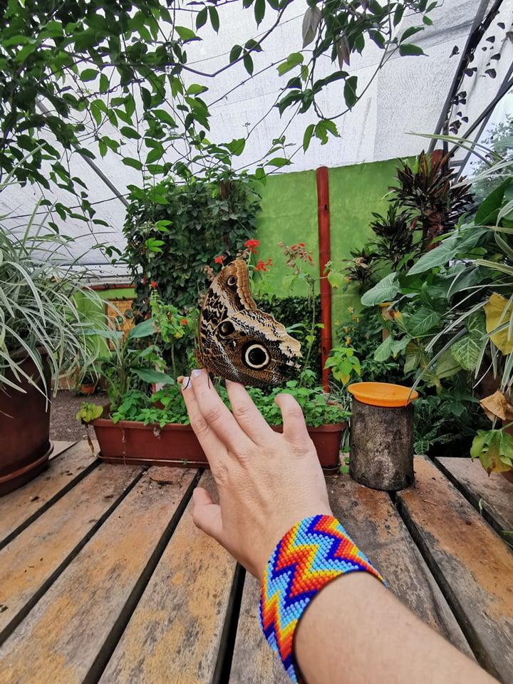 nature equateur