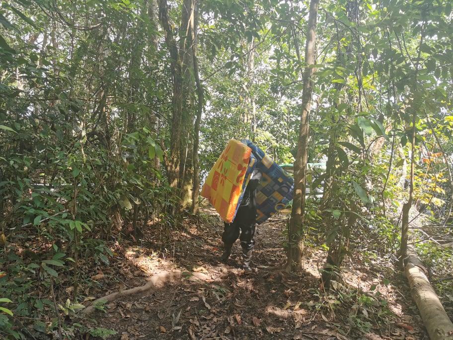 camping jungle