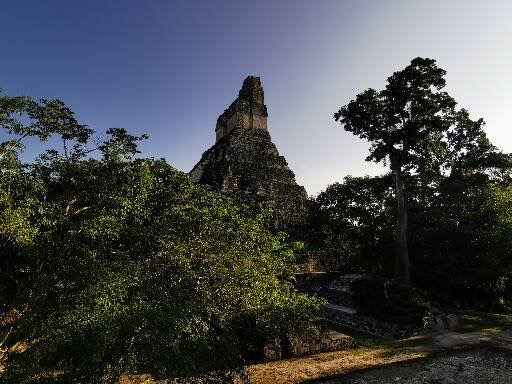 tikal visiter cite maya